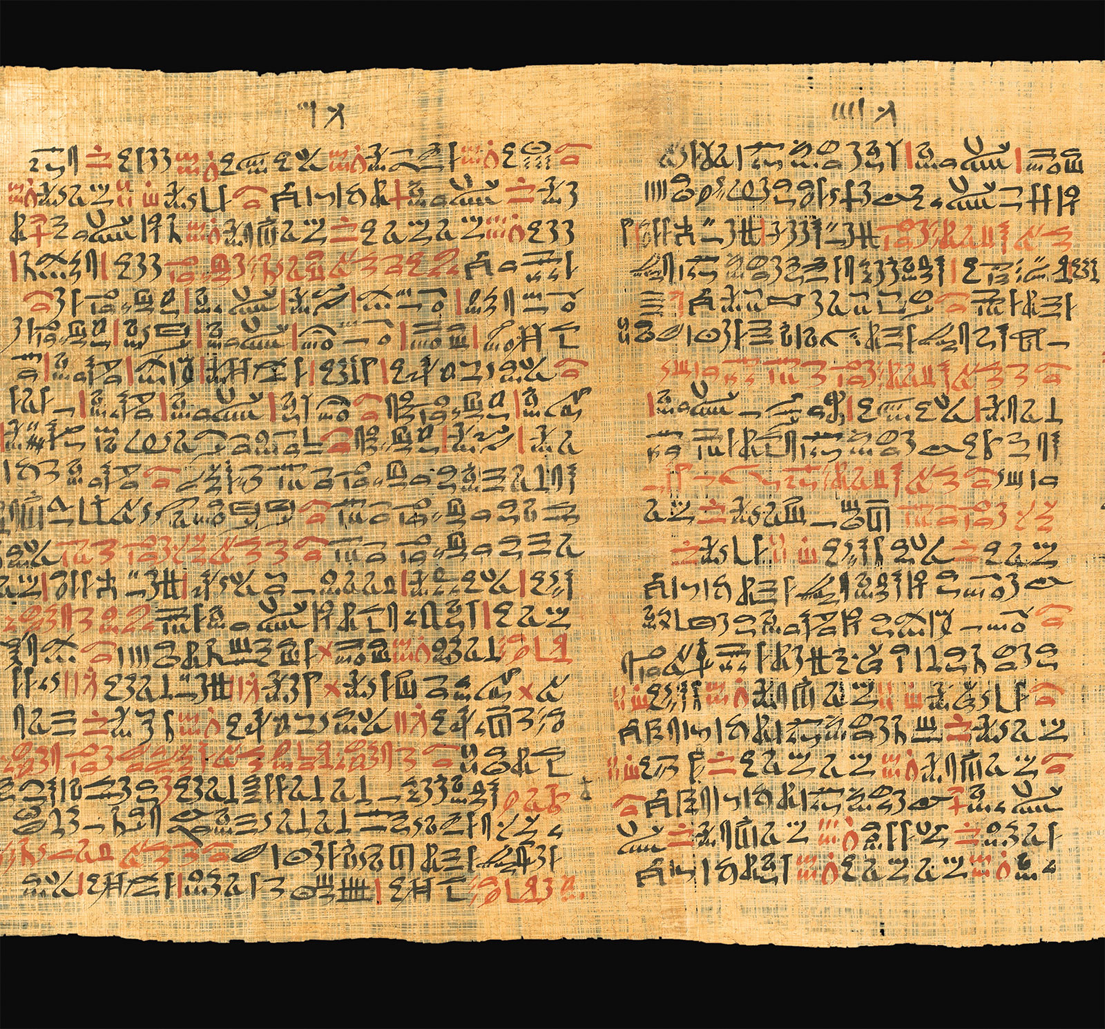 Showroom – Papyrus Ebers